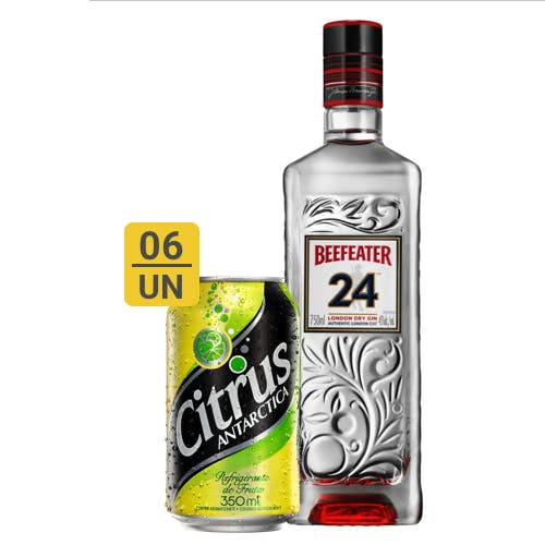 Combo Citrus + Beefeater  (6 Citrus 350ml + 1 Beefeater 24 Gin Inglês 750ml)